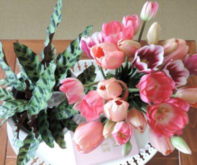 Inspiration: les tulipes de mon jardin